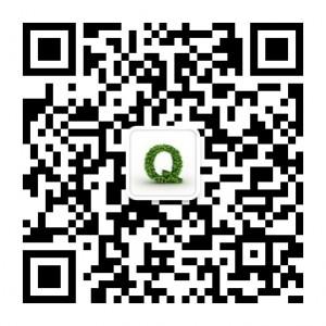 小Q网络营销公众号